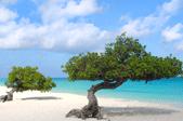 Paket nach Aruba versenden