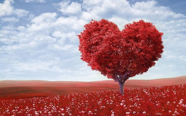 Saint Valentin ou Journée des célibataires